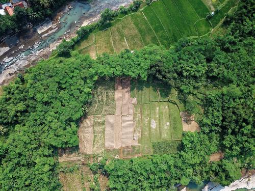 Aerial photography farmland Stock Photo 10