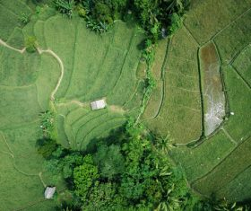 Aerial photography farmland Stock Photo 11