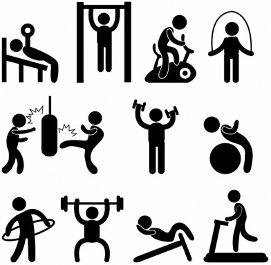 Athletic Gym Gymnasium Exercise vector
