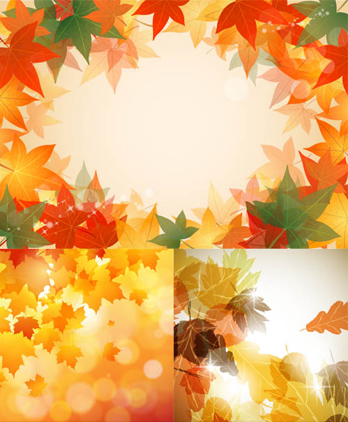 Autumn Backgrounds art Shiny Vector