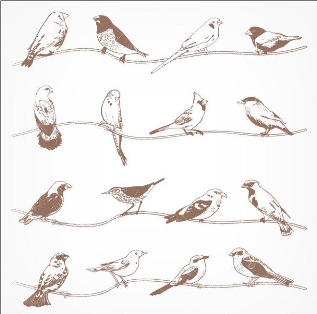 Birds on Branches vector graphics