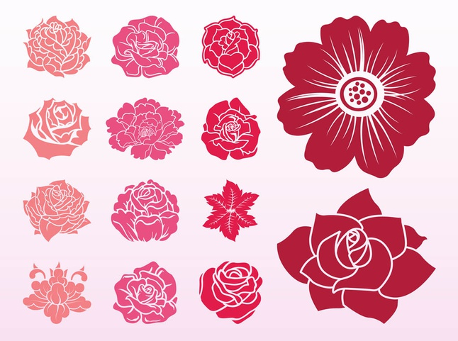 Blooming Flowers Illustration vector