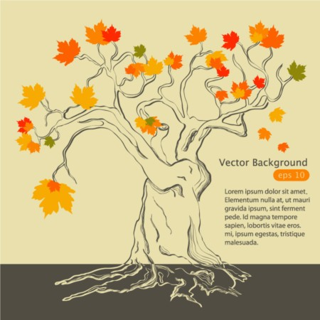 Bright autumn maple vector
