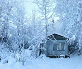 Cabin in the snow Stock Photo 05