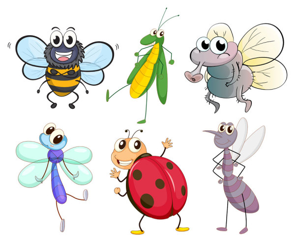 Cartoon Insect free 8 vector