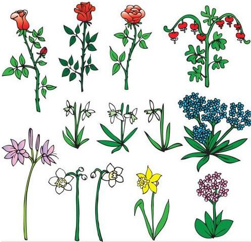 Different Flowers vectors