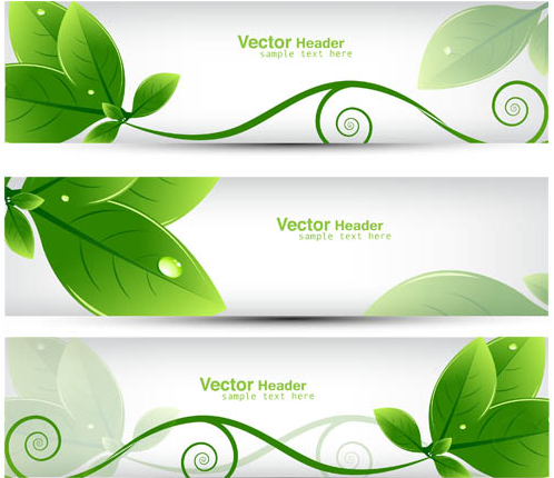 Eco Green Banners vector