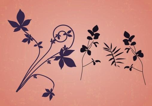 Floral Design Elements vector graphics