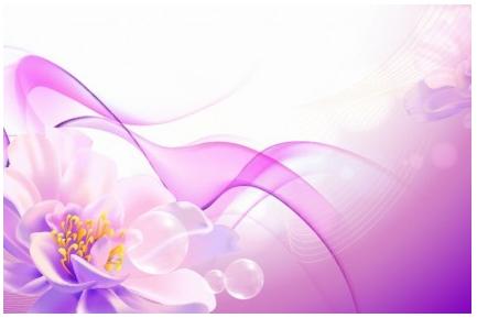 Flower Pink Background creative vector