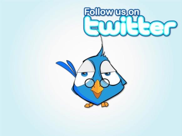 Follow Bird vector
