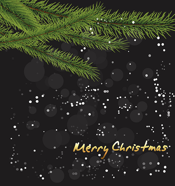Green Branches Christmas Background set vector