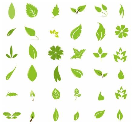 Green Leaf Design Elements vector design