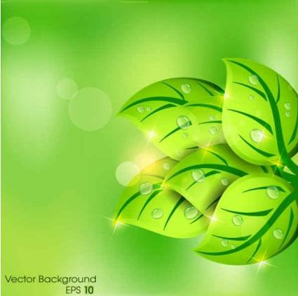 Green leaf background Illustration vector