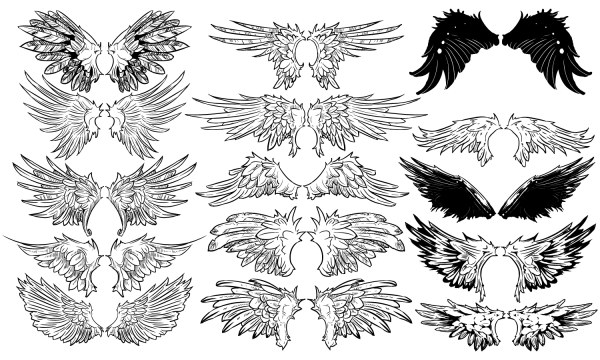 Hand drawn wing design vector