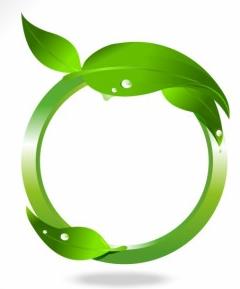 Leaf Frame graphic vector