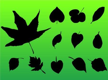Leaf Pack vector