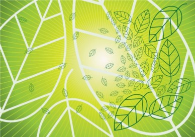 Leaf background Graphics vectors graphic