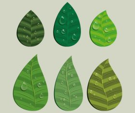Leaves and dewdrop illustration vector 01