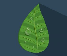 Leaves and dewdrop illustration vector 03