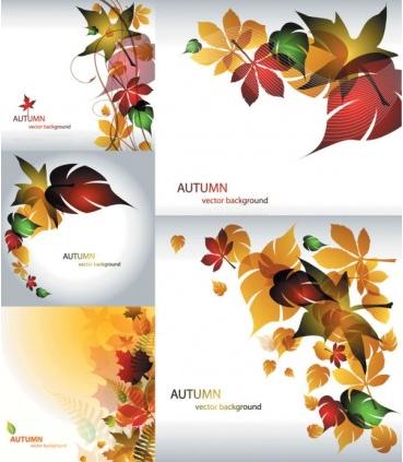 Maple leaf theme vector graphics