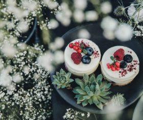 Melaleuca fruit cake Stock Photo