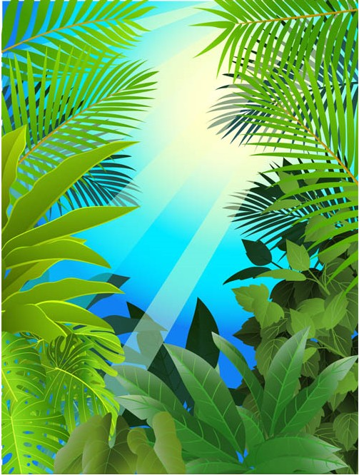 Natural Backgrounds 9 vector