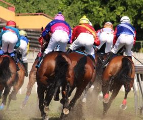 Nervous thrilling horse racing Stock Photo 05