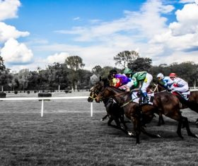 Nervous thrilling horse racing Stock Photo 10