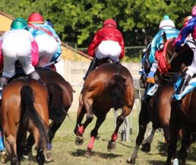 Nervous thrilling horse racing Stock Photo 11