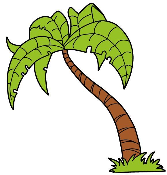 Palm Tree Stock Image vector