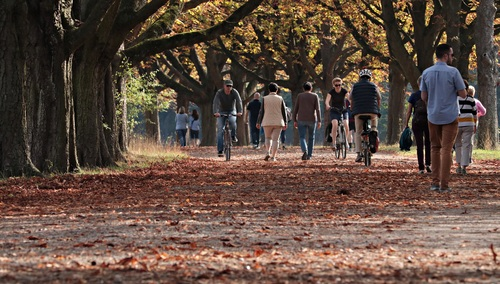 People riding bicycles and walking on boulevard Stock Photo