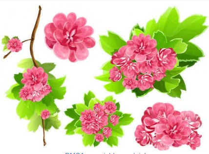 Pink Flowers background vector graphics