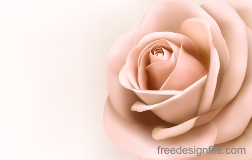 Pink rose background illustration