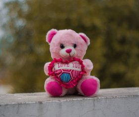 Pink teddy bear toy Stock Photo