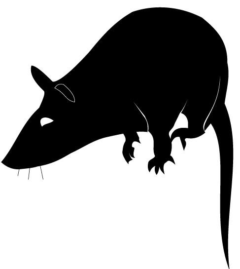 Rat Silhouette Free vector graphic