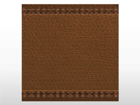 Realistic Leather vector material
