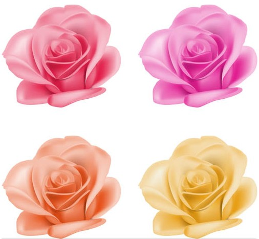 Roses graphic vector