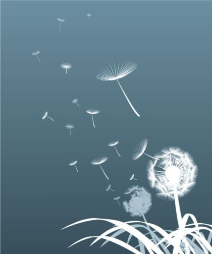 Shiny dandelion silhouette shiny vector