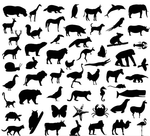 Silhouettes Wild Animals vector set