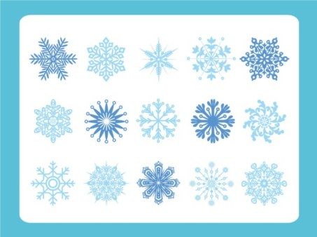 Snow Flake Variety vector