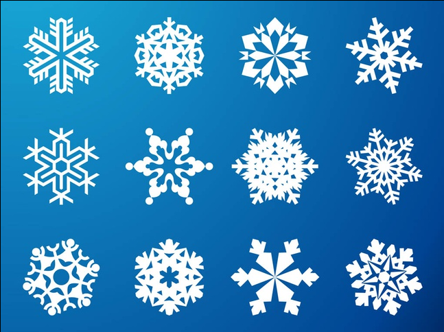 Snowflake Graphics vector