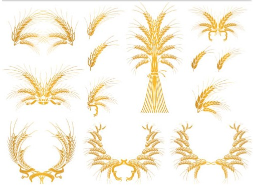 Stylish Wheat Emblems vectors