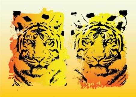 Tigers Graphics set vector