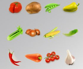 Vegetable realistic vector