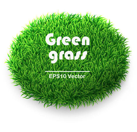 Vivid Green grass 2 vector