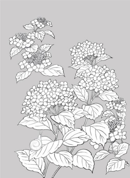 White plants and flowers vector