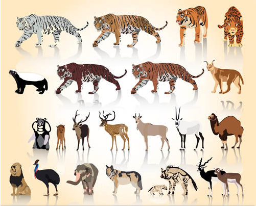 Wild Different Animals shiny vector