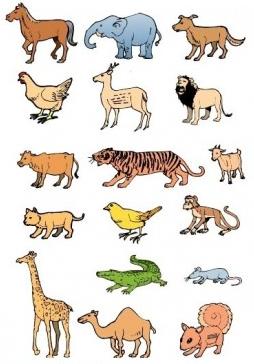 animal set pack vector
