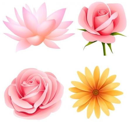 beautiful small flowers shiny vector