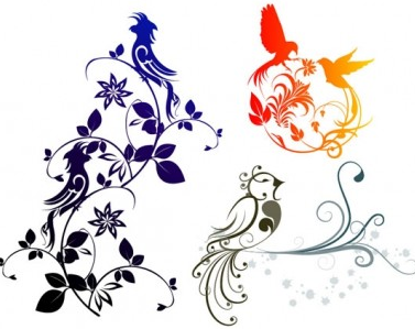 exquisite bird pattern shiny vector